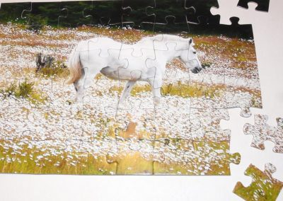Puzzle de caballo
